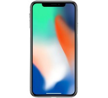Apple iPhone X (3GB,256GB,Silver)