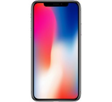Apple iPhone X (3GB,256GB,Space Gray)