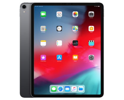 Apple iPad Pro 12.9-inch (Wi-Fi,4GB,256GB,Space Gray)